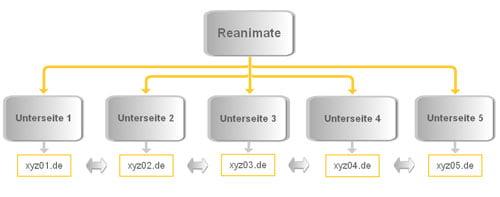 Reanimate Pagerank Verteilung